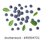 Blueberries With Leaves On...