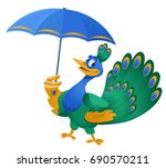 bad weather. funny peacock with ... | Shutterstock .eps vector #690570211