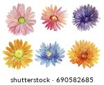 set of autumn flowers.... | Shutterstock . vector #690582685