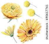 watercolor flowers set in... | Shutterstock . vector #690617761