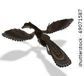 dinosaur archaeopteryx. 3d... | Shutterstock . vector #69071587