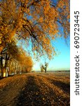 autumn in the floodplain of the ... | Shutterstock . vector #690723445