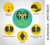 chronic kidney disease risk... | Shutterstock .eps vector #690728245