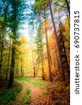 wonderful forest in the autumn... | Shutterstock . vector #690737815