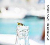 wasp on empty bottle. drinking... | Shutterstock . vector #690748501