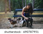 Stock photo dog walker with dogs enjoying in park 690787951