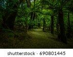 a walk through a dense rain... | Shutterstock . vector #690801445