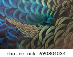 Beautiful Peacock Feathers ...