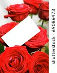 Valentine's day rose with copy space card. - stock photo