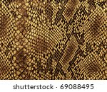Snake Skin With The Pattern...