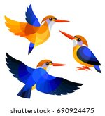 Stock vector stylized birds african dwarf kingfisher 690924475