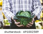 organic vegetables. farmers... | Shutterstock . vector #691002589