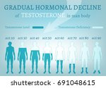 testosterone hormone level.... | Shutterstock .eps vector #691048615