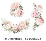 watercolor flowers. floral... | Shutterstock . vector #691056325