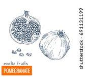 pomegranate. hand drawn vector...   Shutterstock .eps vector #691131199