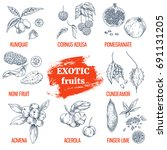 exotic fruits collection.... | Shutterstock .eps vector #691131205