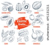 exotic fruits collection.... | Shutterstock .eps vector #691131211