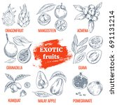 exotic fruits collection.... | Shutterstock .eps vector #691131214