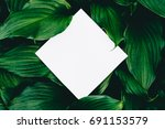creative layout made of leaves... | Shutterstock . vector #691153579