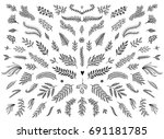 Stock vector hand sketched floral design elements flowers and leaves for text decoration 691181785