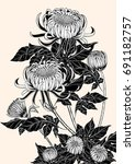 chrysanthemum vector on brown...   Shutterstock .eps vector #691182757