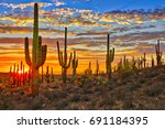 Sunset In Sonoran Desert  Near...