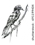 crow drawing in crayon style... | Shutterstock . vector #691199404