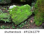 stone in the shape of the heart ...   Shutterstock . vector #691261279