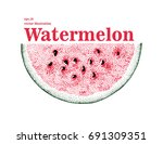 hand drawn vector watermelon... | Shutterstock .eps vector #691309351