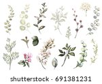 set watercolor elements  ... | Shutterstock . vector #691381231