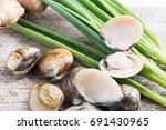 fresh enamel venus shell ... | Shutterstock . vector #691430965