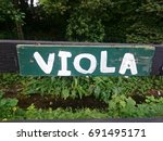 viola plant sign | Shutterstock . vector #691495171
