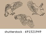 vector three hand painted eagle | Shutterstock .eps vector #691521949