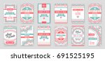 set of raster design awesome... | Shutterstock . vector #691525195