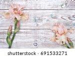 Pink Iris Flowers On White...