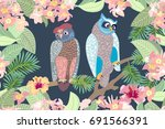 night garden and owls. seamless ... | Shutterstock .eps vector #691566391