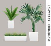 Vector Plants Potted In...