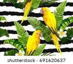 beautiful seamless vector...   Shutterstock .eps vector #691620637