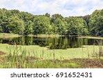 aspen pond  near north vernon ... | Shutterstock . vector #691652431