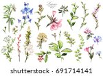 big set watercolor elements  ... | Shutterstock . vector #691714141