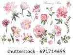 Stock photo set watercolor elements of flower rose peonies collection garden and wild flowers leaves 691714699