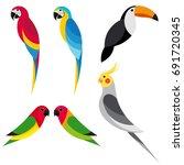 Set Flat Parrot On White...