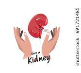 hand with kidney. hope for...   Shutterstock .eps vector #691721485
