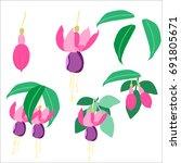 Fuchsia Design Set. 2 Pink...