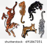 set of wild cat designs.... | Shutterstock .eps vector #691867351