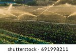 irrigation system watering a... | Shutterstock . vector #691998211