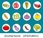 vegetables cartoon doodle icon...   Shutterstock .eps vector #692018011