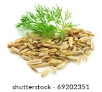 Seeds And A Fennel Branch On A...