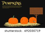 pumpkins on straw with blank... | Shutterstock .eps vector #692030719