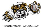 a bulldog angry animal sports... | Shutterstock .eps vector #692053369